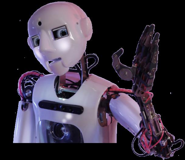Boris bot