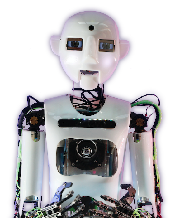 Norris the Bot