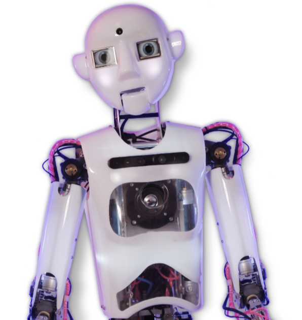 Boris the Bot